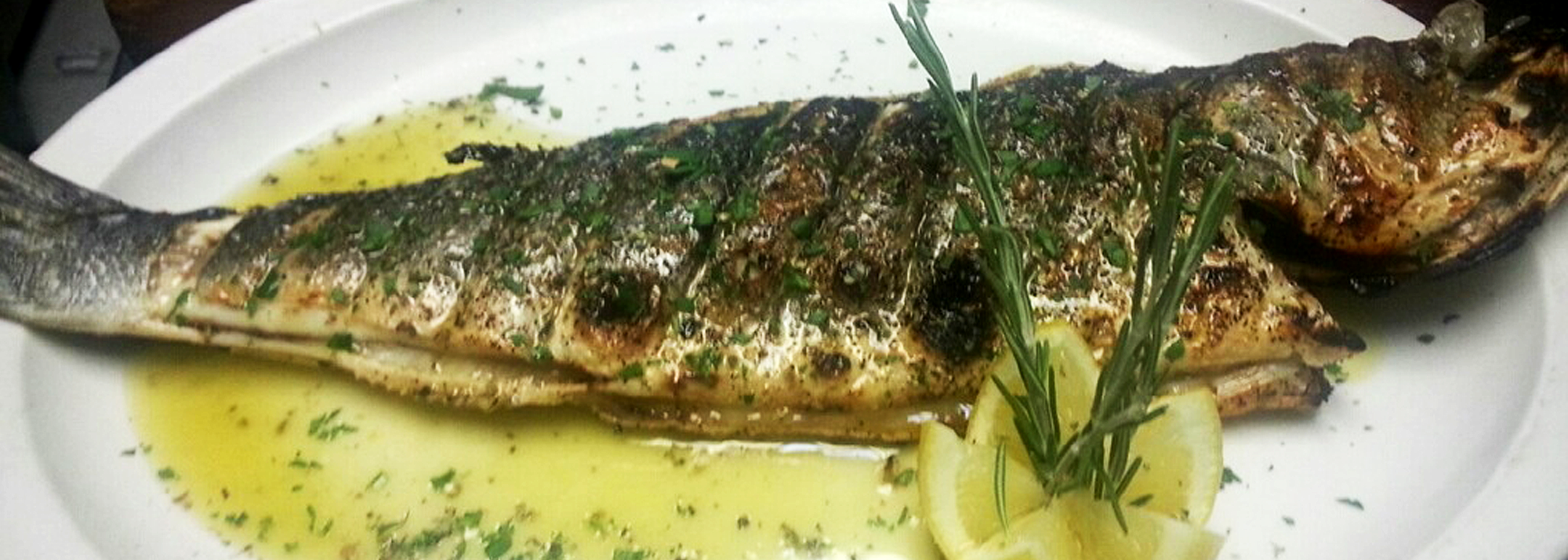 greek mediterranean restaurant littleneck queens long